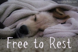 Free-to-Rest