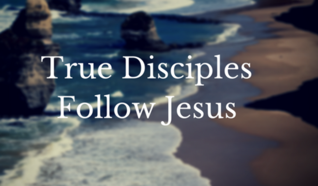 disciple-of-jesus