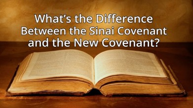New Covenant - 1