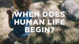Human Life Begins When